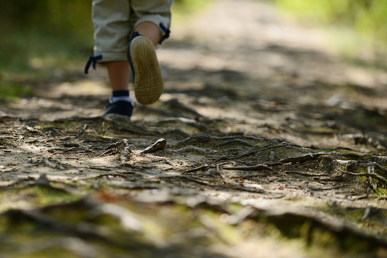 Nature-Walking Encounters Facts