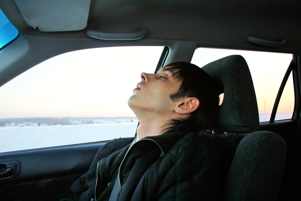 Student Driving Test Nightmares Facts