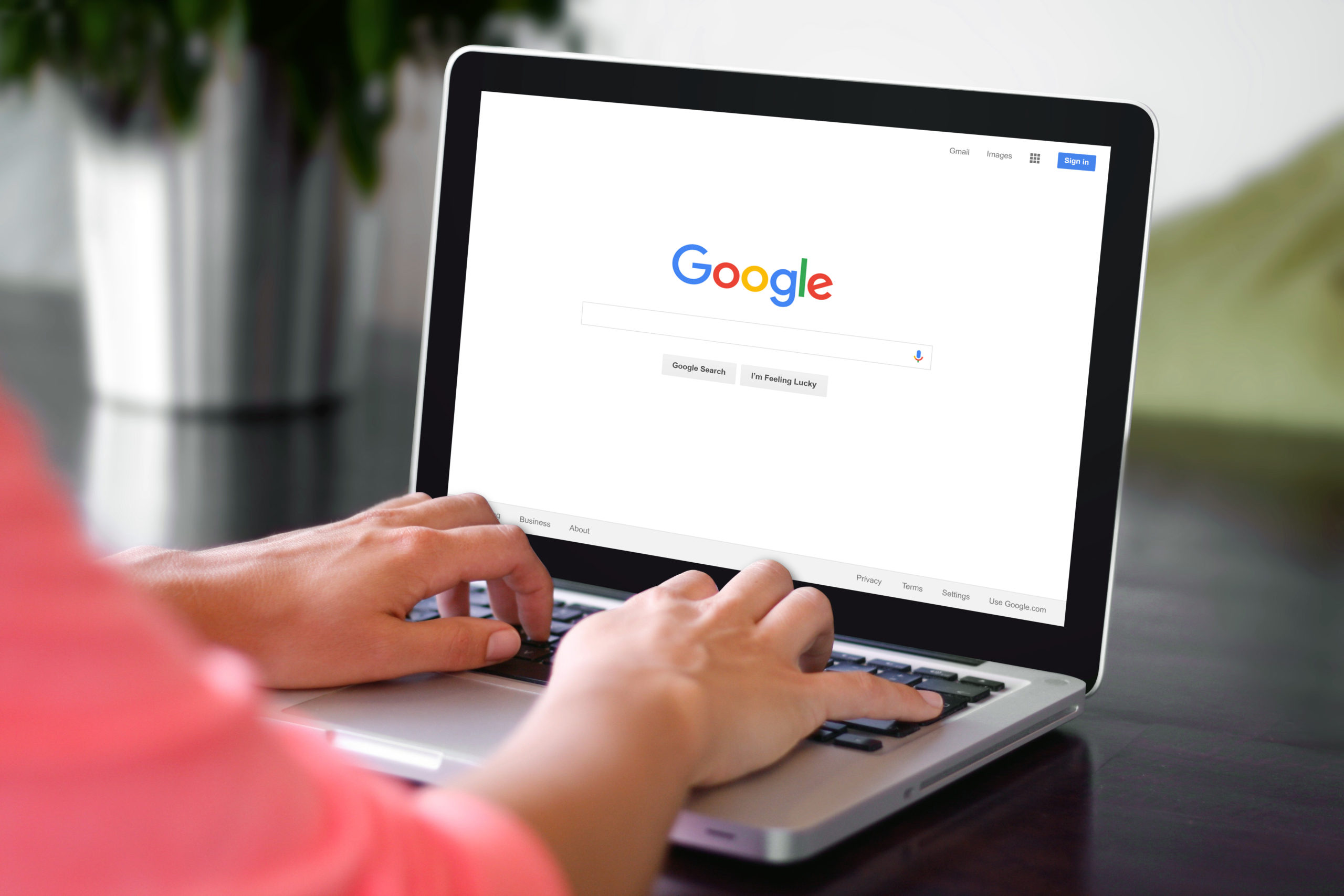 Search Histories facts