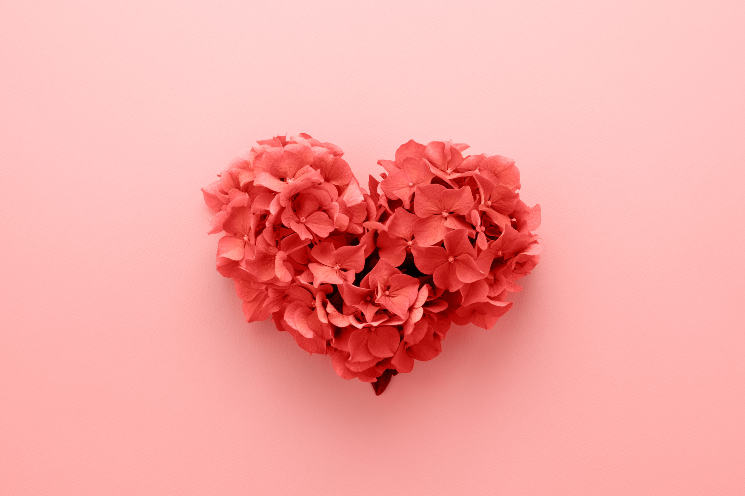 What is valentine's day editorial