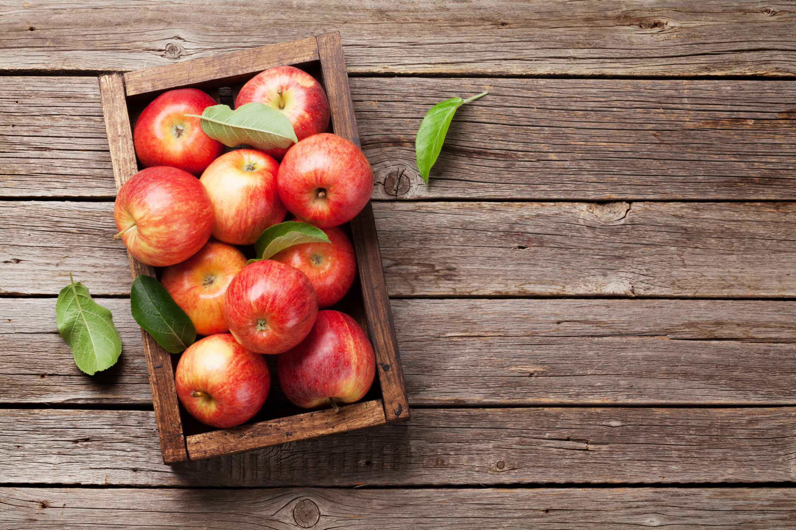 Apples editorial