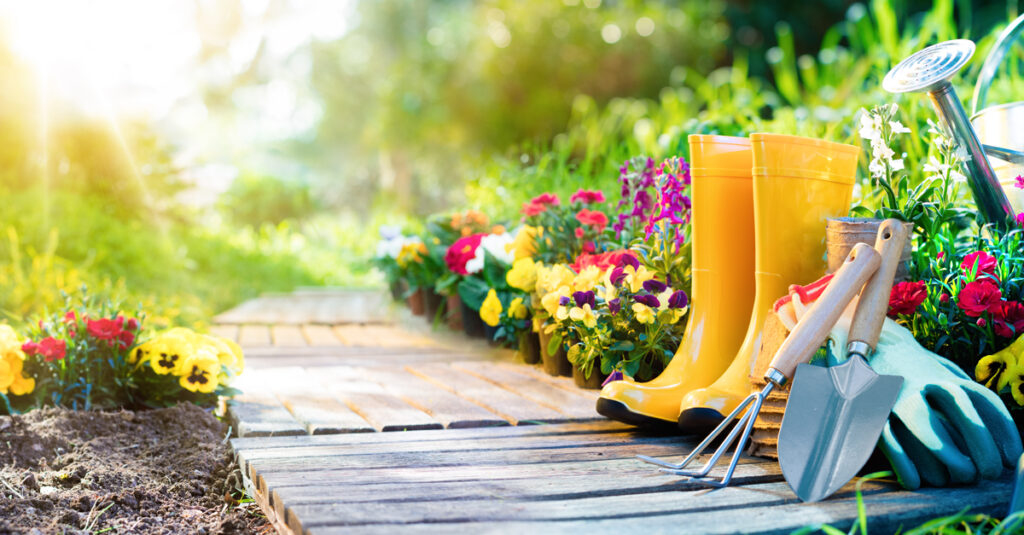 How To Start A Garden Without Breaking Your Back—Or Your Budget