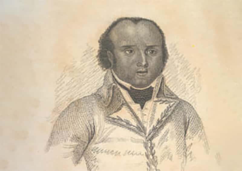 Thomas-Alexandre Dumas facts