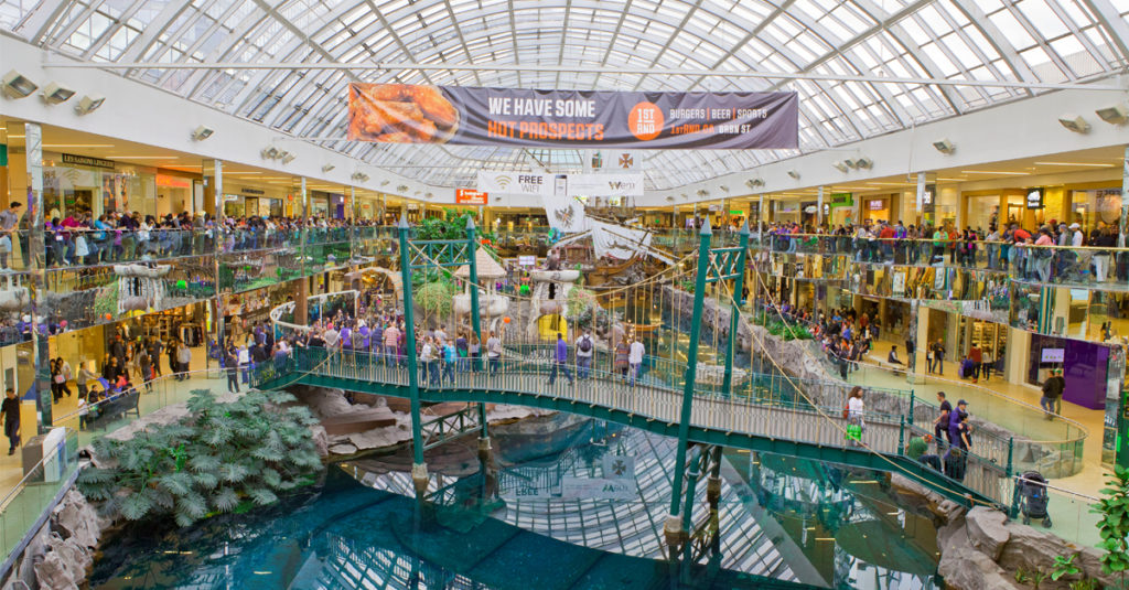 The Mall With It All: Suburban Dreaming In The Golden Age Of Malls