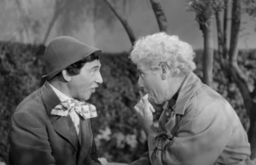Chico Marx facts