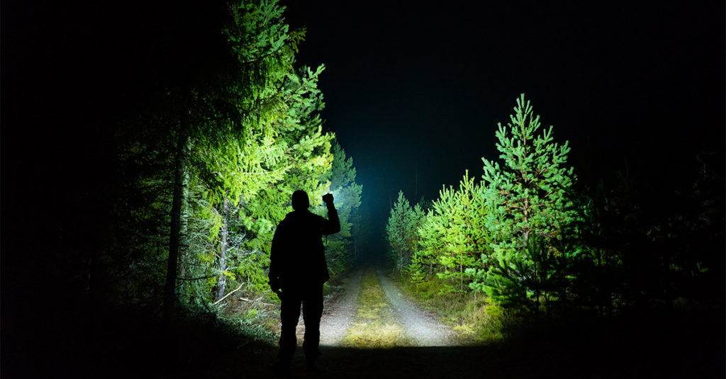 Night Terrors: Creepy Encounters After Dark
